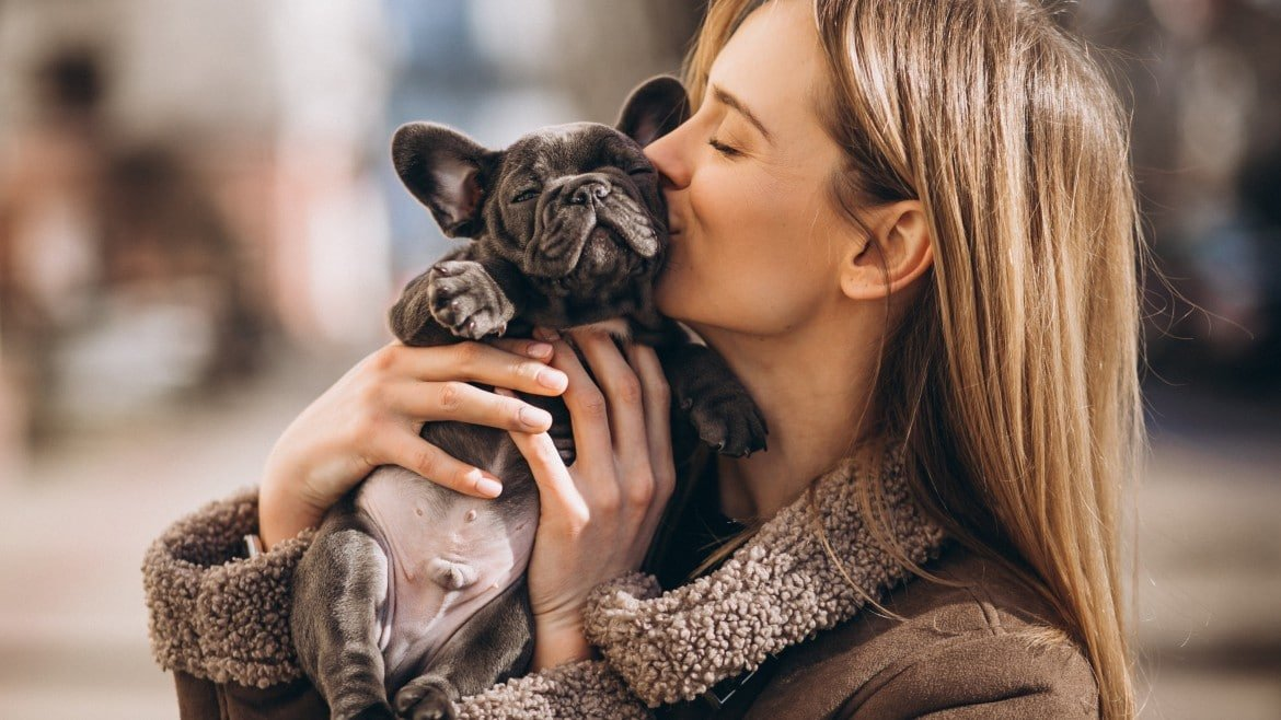 Goods And Bads About French Bulldogs: Facts Can Take Your Breath Away