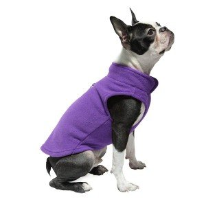 jackets for frenchies